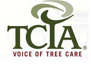 tcia voice