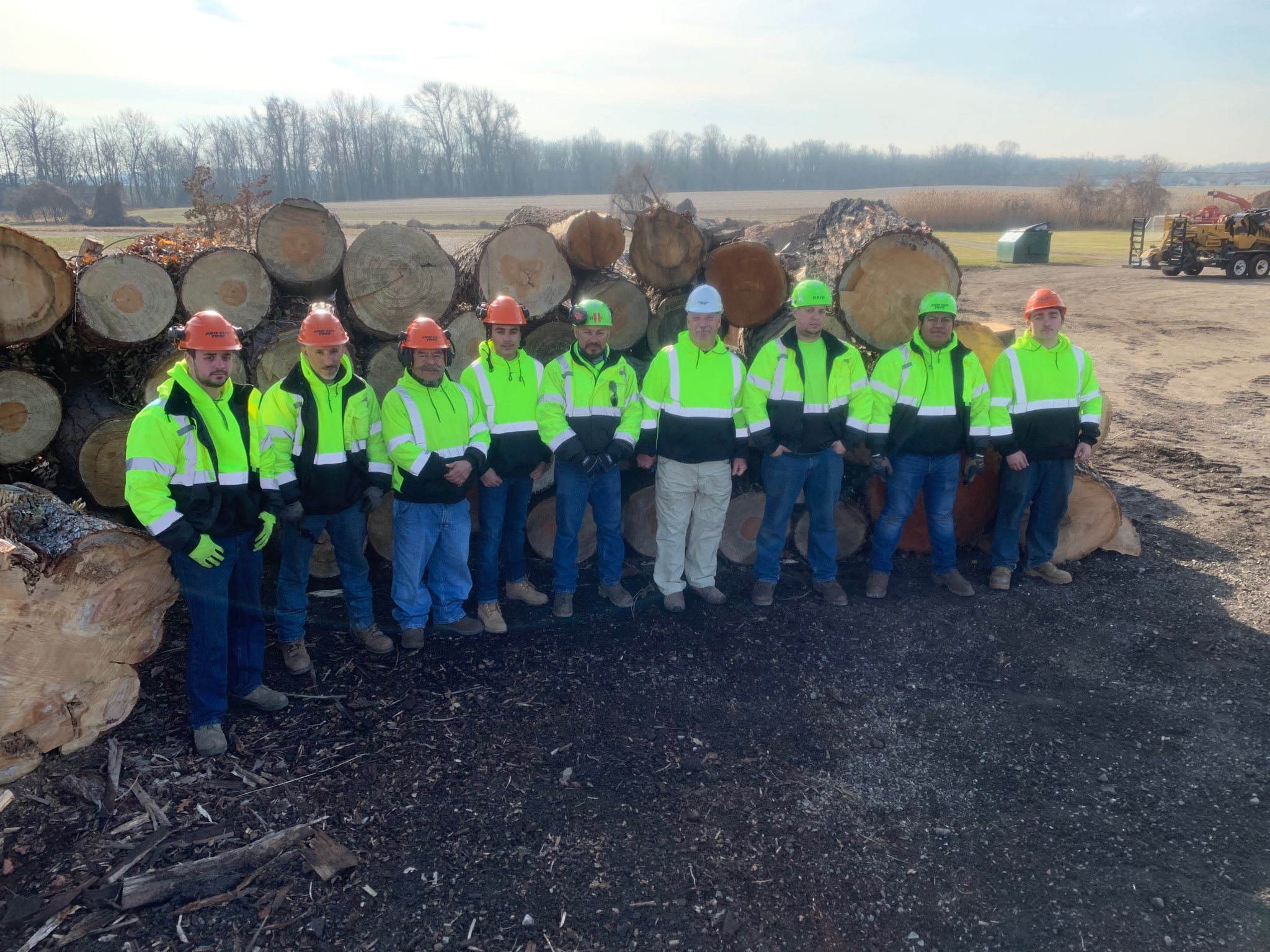 crew standing in front of a pile of logs